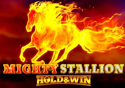 Mighty Stallion Hold&Win review