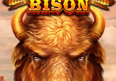 Raging Bison  review