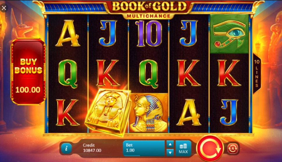 Book of Gold Multichance - Slot
