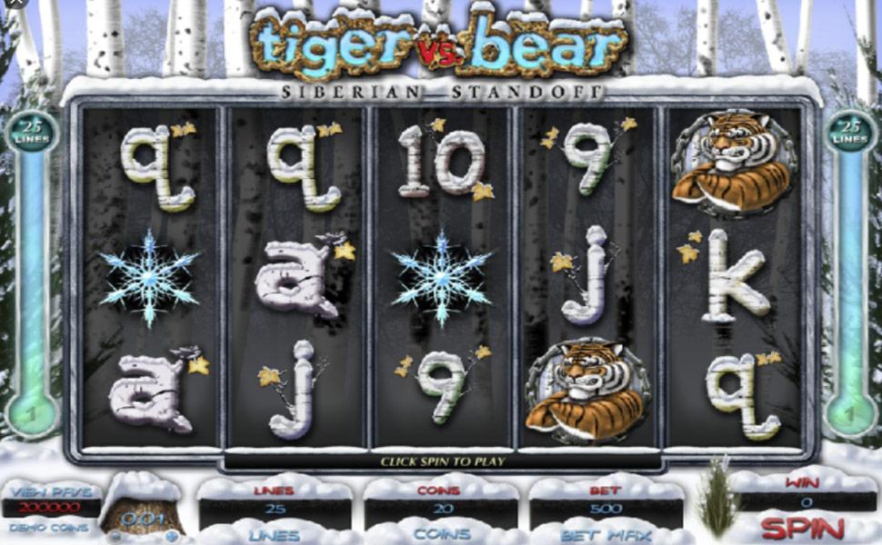 Tiger vs bear - slot